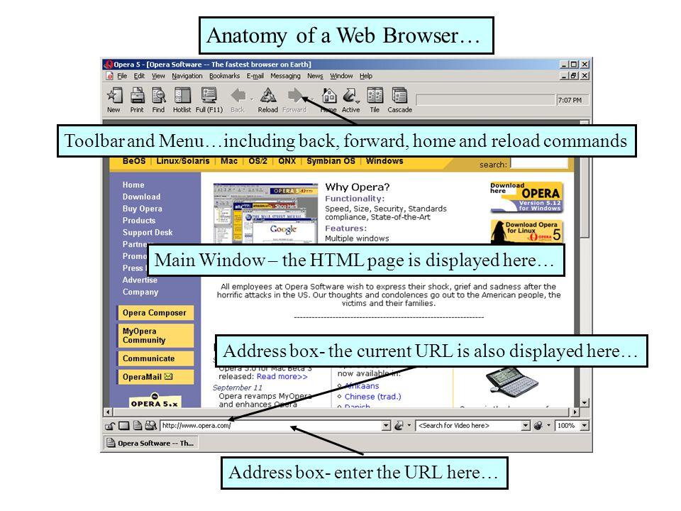 Chap 9 Internet Tools Web Browser How A Web Browser Works Types Of