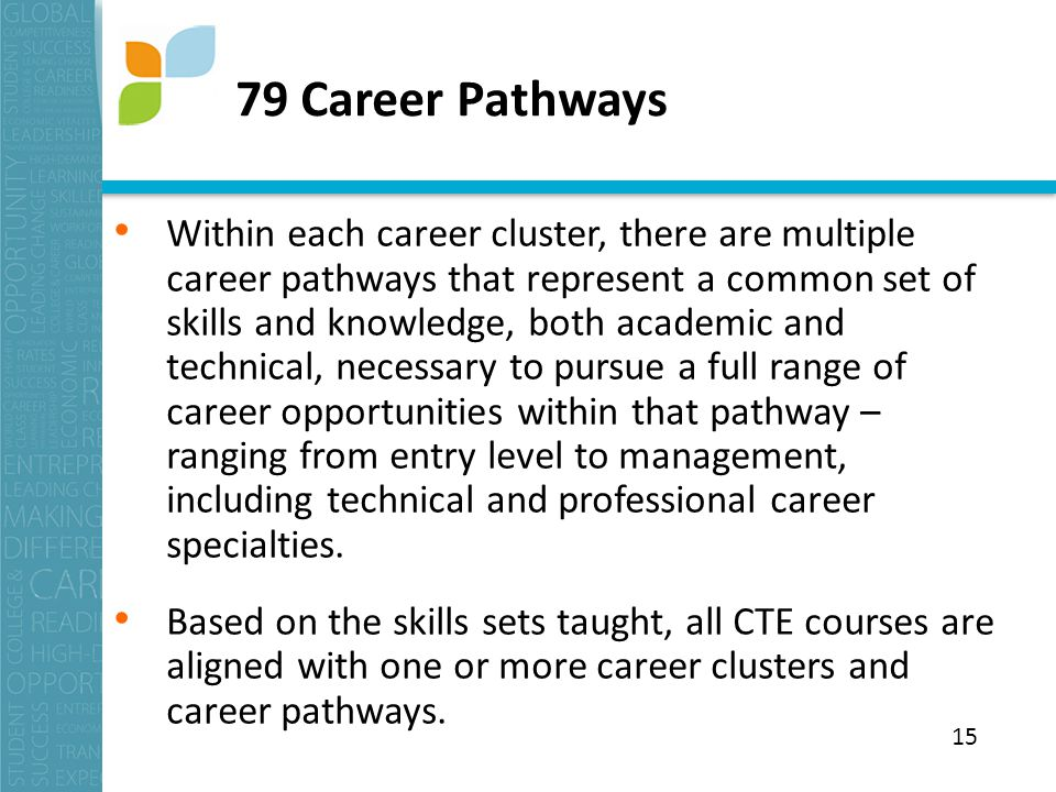 79 Career Pathways Within each career cluster, there are multiple career pathways that represent a common set of skills and knowledge, both academic and technical, necessary to pursue a full range of career opportunities within that pathway – ranging from entry level to management, including technical and professional career specialties.