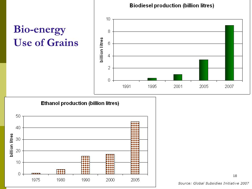 18 Bio-energy Use of Grains Source: Global Subsidies Initiative 2007