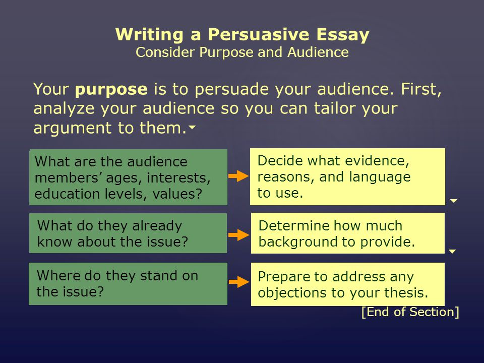 mini workshop writing a persuasive essay assignment choose an issue   writing