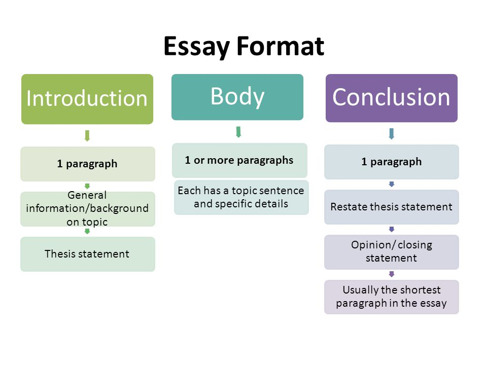 structure of a conclusion paragraph in an essay Structure of your essay conclusion should be less complicated and most powerful with striking sentences and clear thoughts it can be divided into several parts the main part you need to do is to restate your thesis statement.