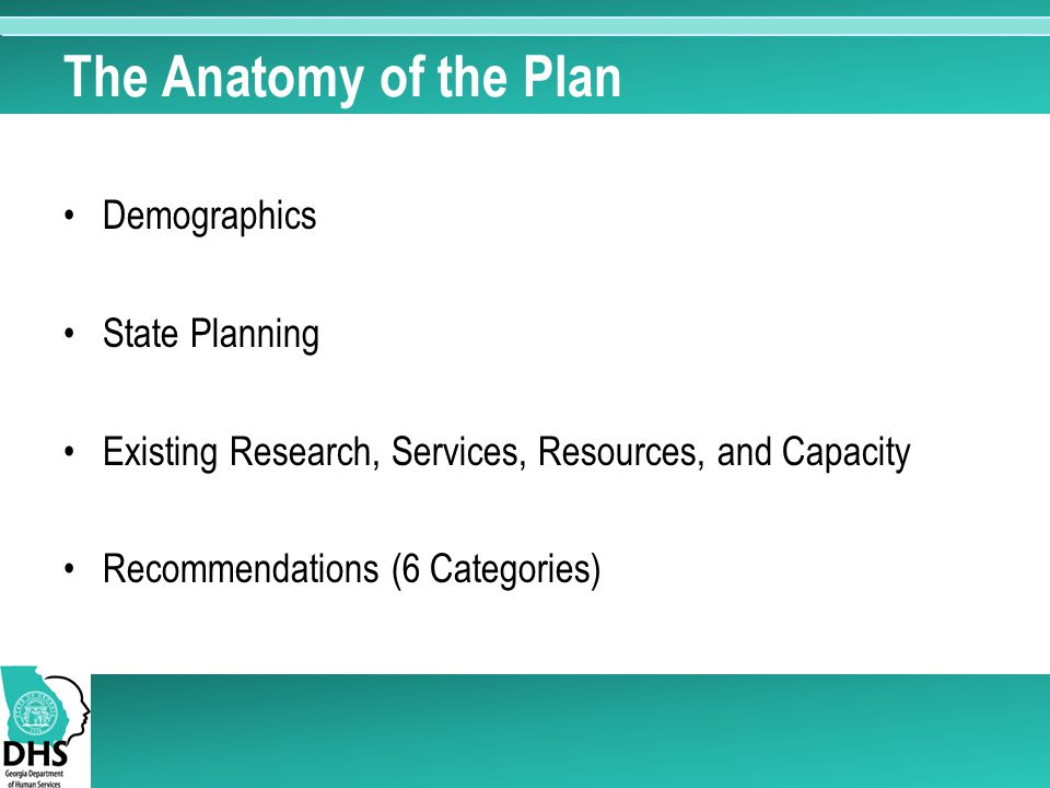The Anatomy of the Plan Demographics State Planning Existing Research, Services, Resources, and Capacity Recommendations (6 Categories)