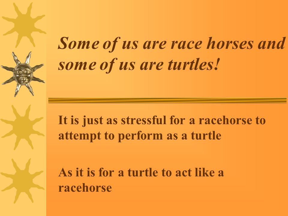 Some of us are race horses and some of us are turtles.