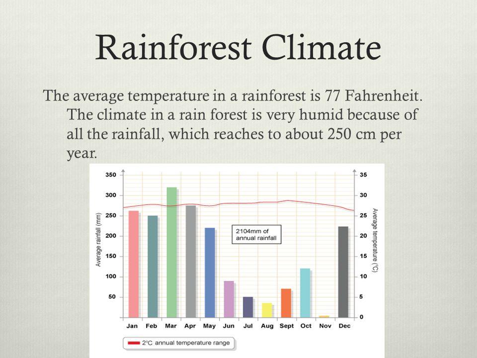 average rainfall in the amazon basin