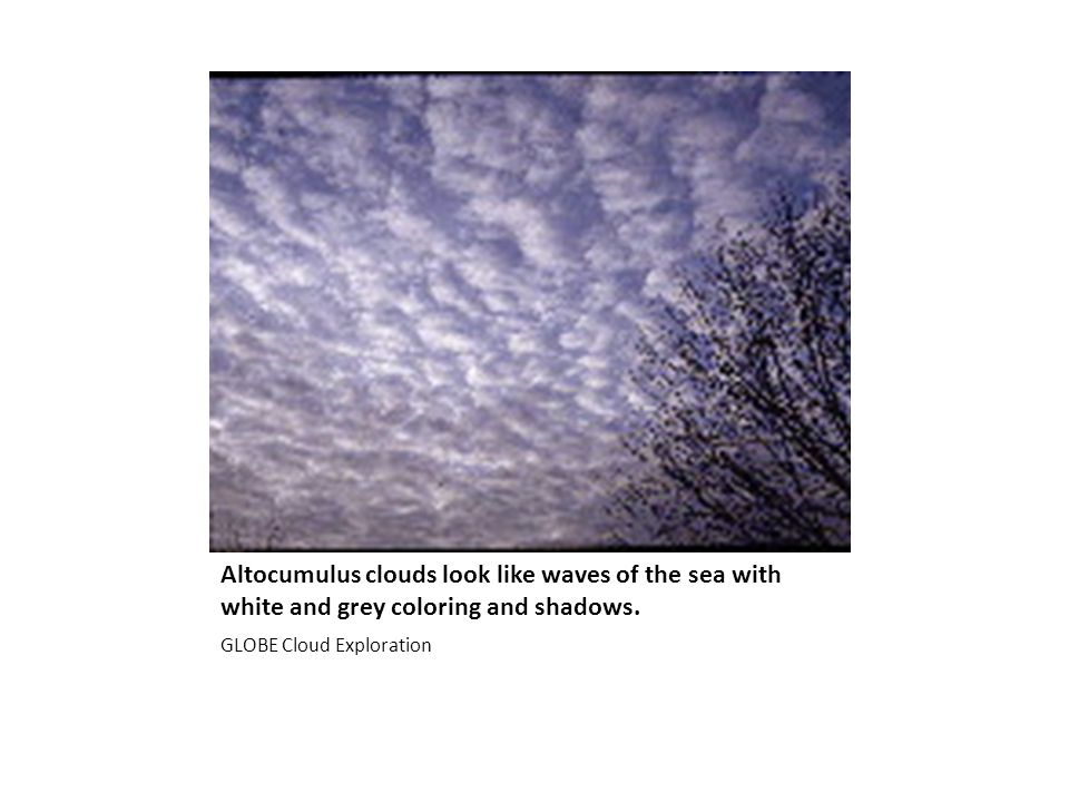 Altocumulus clouds look like waves of the sea with white and grey coloring and shadows.