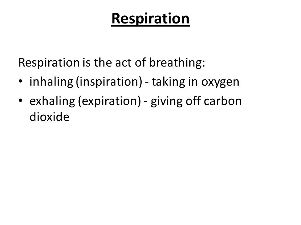 Respiration is the act of breathing: inhaling (inspiration) - taking in oxygen exhaling (expiration) - giving off carbon dioxide Respiration