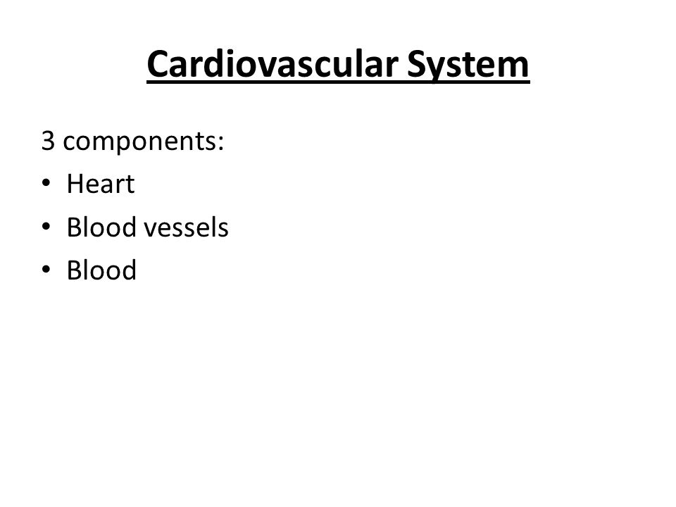 Cardiovascular System 3 components: Heart Blood vessels Blood