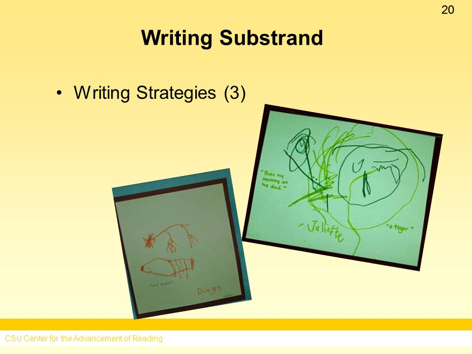 20 Writing Substrand Writing Strategies (3) CSU Center for the Advancement of Reading