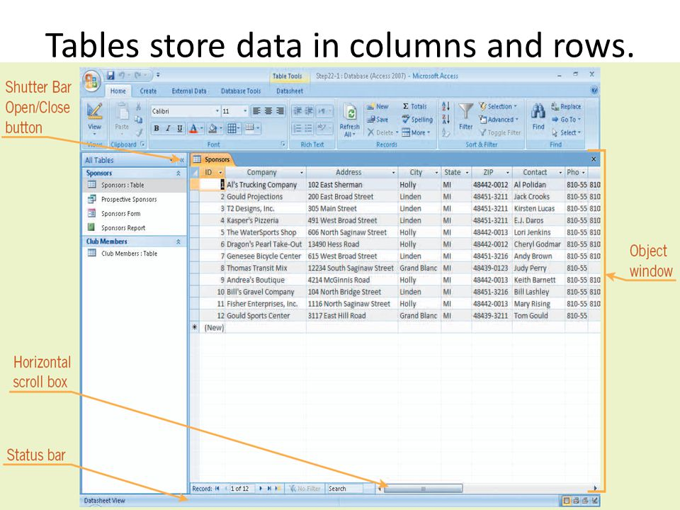 Tables store data in columns and rows.