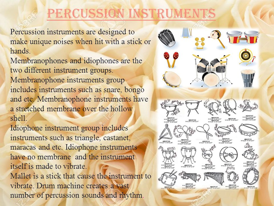 Percussion instruments Percussion instruments are designed to make unique noises when hit with a stick or hands.