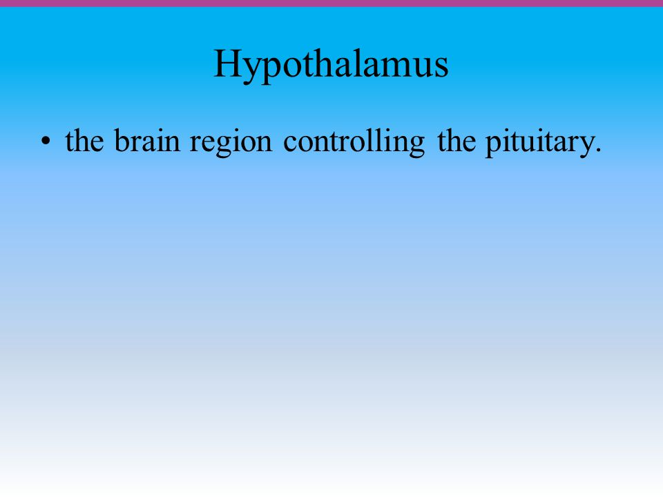 Hypothalamus the brain region controlling the pituitary.