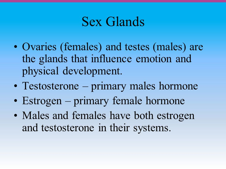 Sex Glands Ovaries (females) and testes (males) are the glands that influence emotion and physical development.