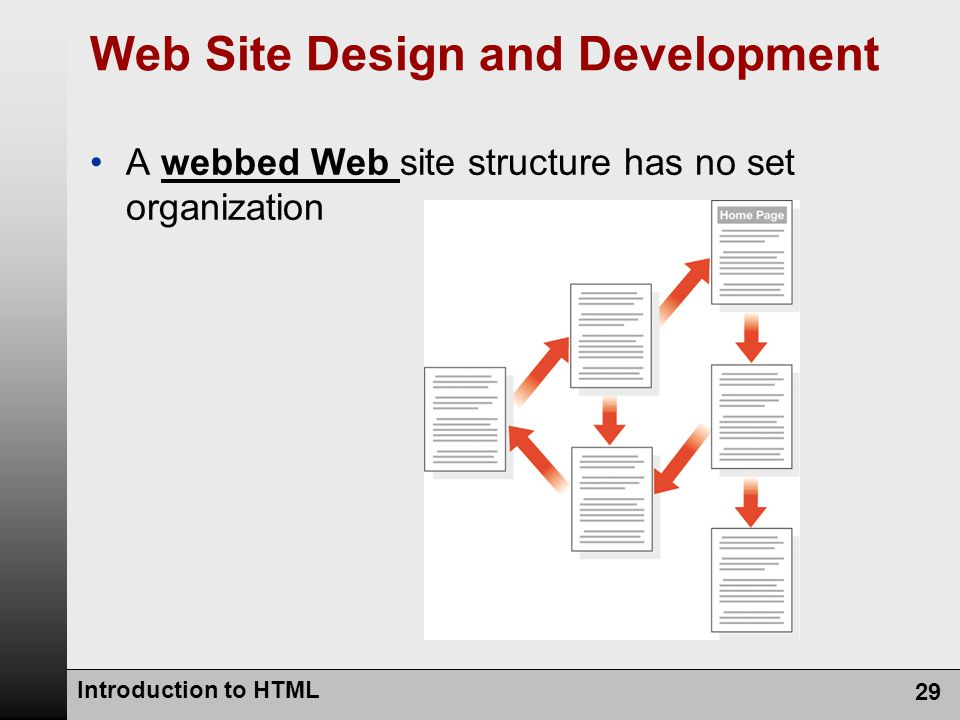 A webbed Web site structure has no set organization Introduction to HTML 29 Web Site Design and Development