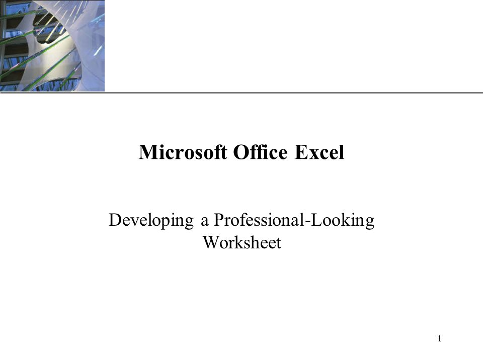 XP 1 Microsoft Office Excel Developing a Professional-Looking Worksheet
