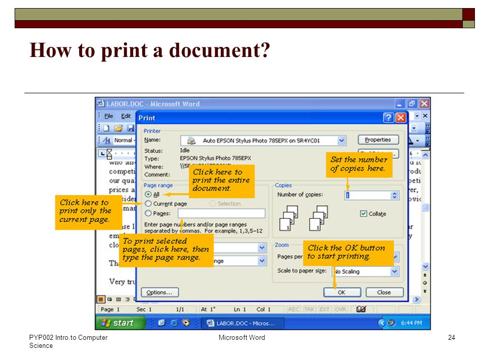PYP002 Intro.to Computer Science Microsoft Word24 How to print a document