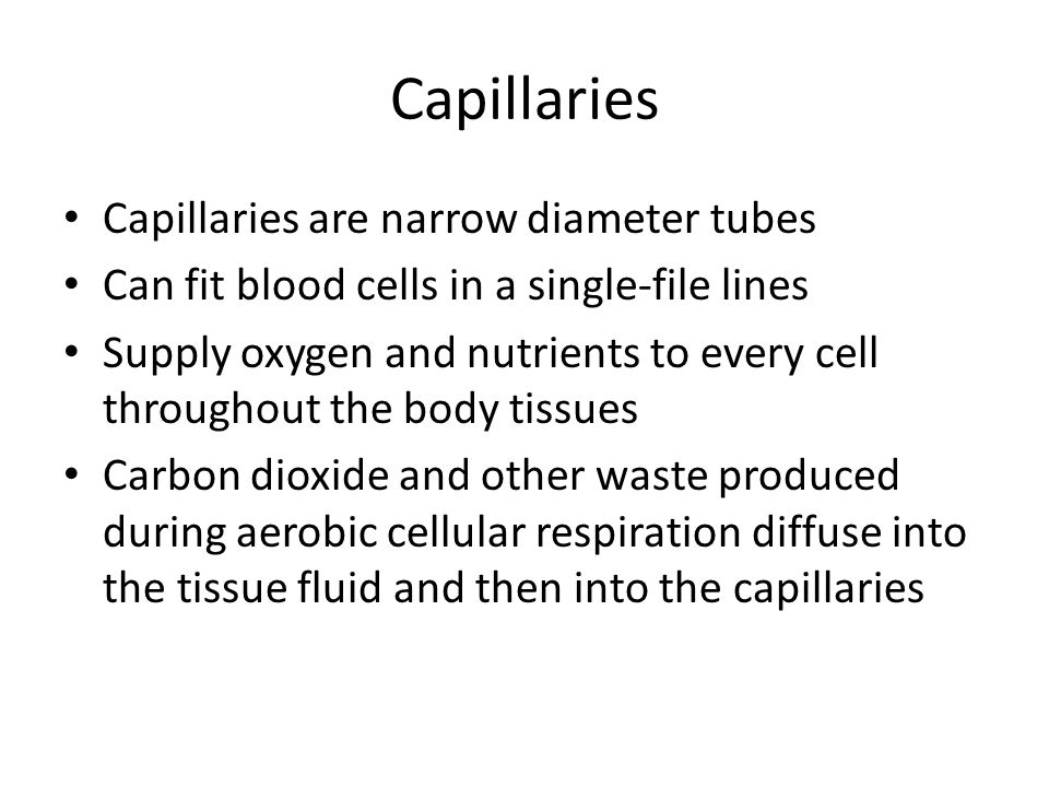 Capillaries Capillaries are narrow diameter tubes Can fit blood cells in a single-file lines Supply oxygen and nutrients to every cell throughout the body tissues Carbon dioxide and other waste produced during aerobic cellular respiration diffuse into the tissue fluid and then into the capillaries