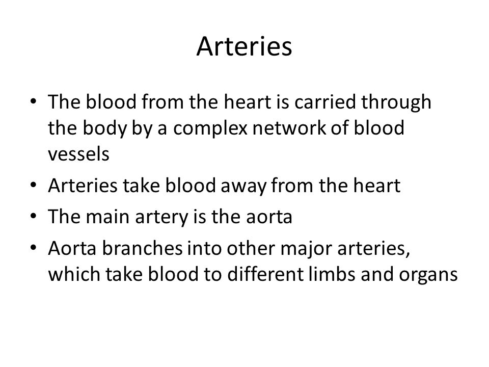 Arteries The blood from the heart is carried through the body by a complex network of blood vessels Arteries take blood away from the heart The main artery is the aorta Aorta branches into other major arteries, which take blood to different limbs and organs
