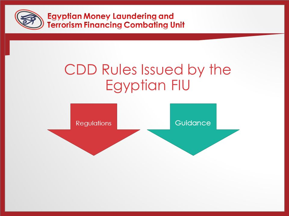 Regulations Guidance CDD Rules Issued by the Egyptian FIU