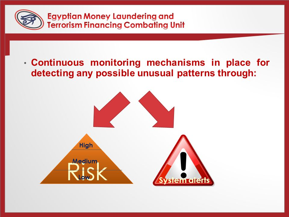 Continuous monitoring mechanisms in place for detecting any possible unusual patterns through: Risk High Medium Low System alerts