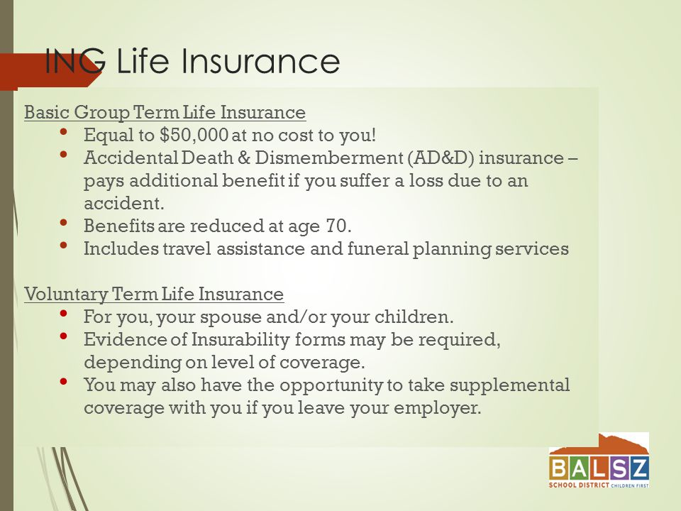 ING Life Insurance Basic Group Term Life Insurance Equal to $50,000 at no cost to you.