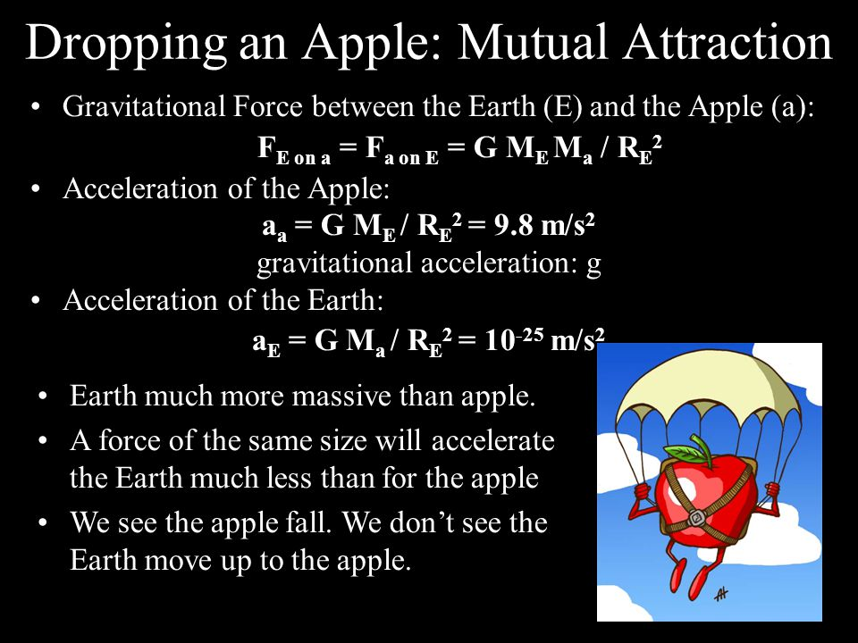 Dropping an Apple: Mutual Attraction Gravitational Force between the Earth (E) and the Apple (a): F E on a = F a on E = G M E M a / R E 2 Acceleration of the Apple: a a = G M E / R E 2 = 9.8 m/s 2 gravitational acceleration: g Acceleration of the Earth: a E = G M a / R E 2 = m/s 2 Earth much more massive than apple.