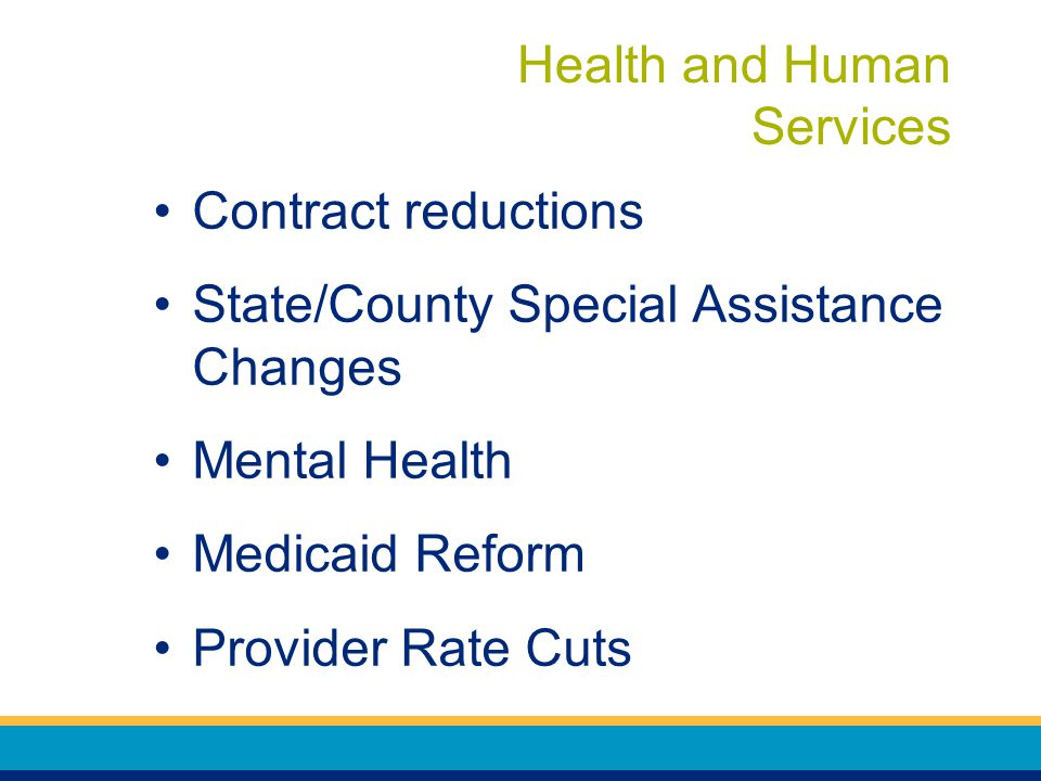 Health and Human Services Contract reductions State/County Special Assistance Changes Mental Health Medicaid Reform Provider Rate Cuts
