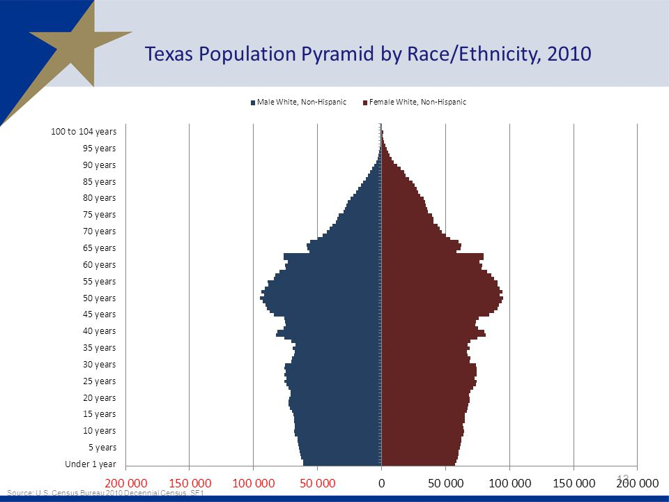 13 Texas Population Pyramid by Race/Ethnicity, 2010 Source: U.S.