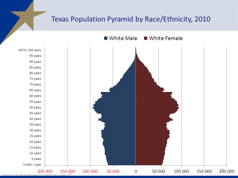 18 Texas Population Pyramid by Race/Ethnicity, 2010 Source: U.S.