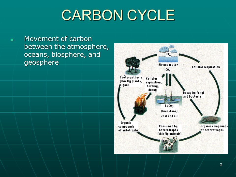 2 CARBON CYCLE Movement of carbon between the atmosphere, oceans, biosphere, and geosphere Movement of carbon between the atmosphere, oceans, biosphere, and geosphere