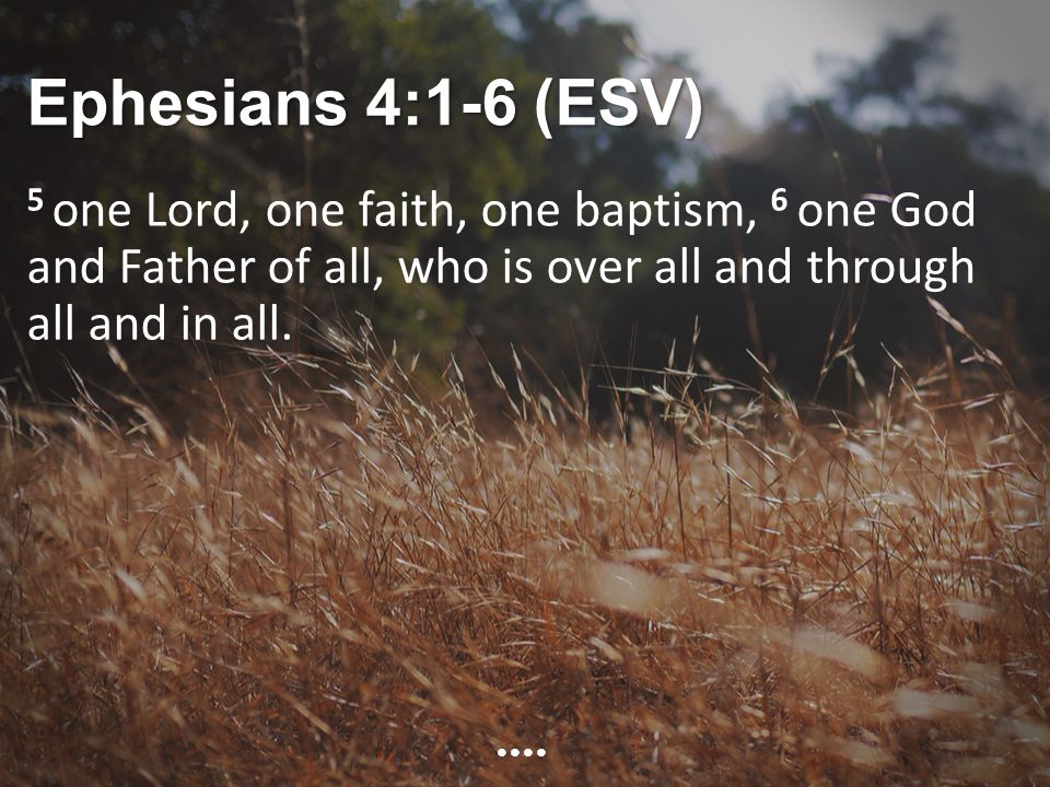 Ephesians 4:1-6 (ESV) 5 one Lord, one faith, one baptism, 6 one God and Father of all, who is over all and through all and in all.
