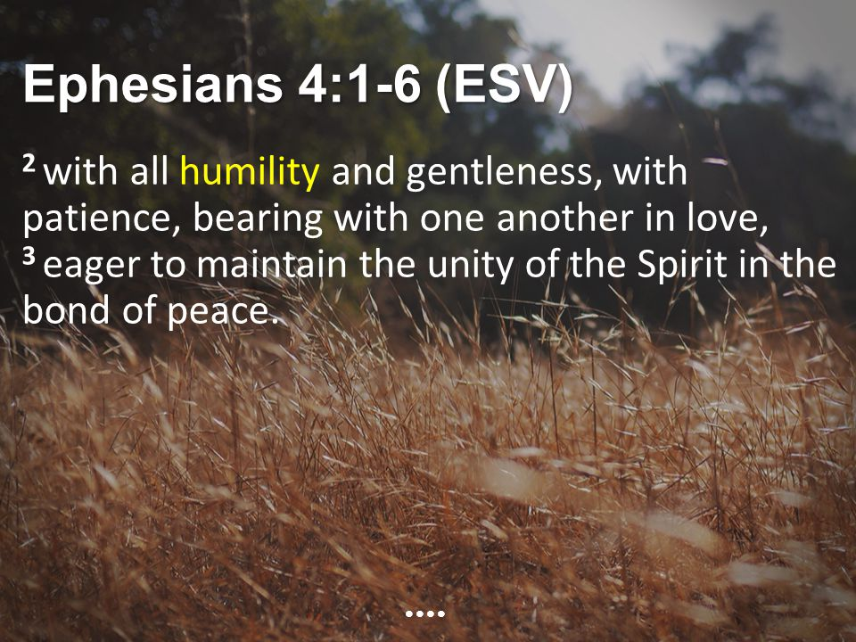 Ephesians 4:1-6 (ESV) 2 with all humility and gentleness, with patience, bearing with one another in love, 3 eager to maintain the unity of the Spirit in the bond of peace.