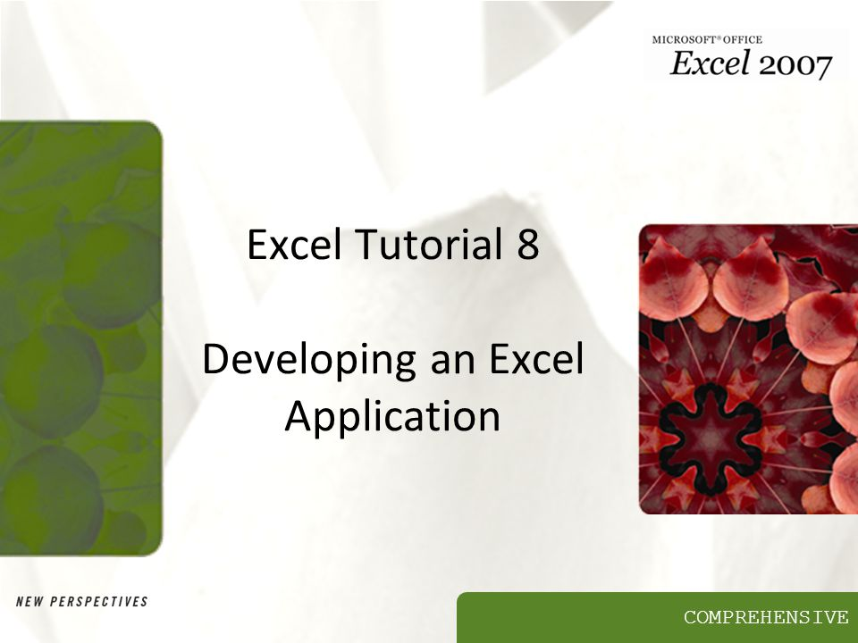 COMPREHENSIVE Excel Tutorial 8 Developing an Excel Application