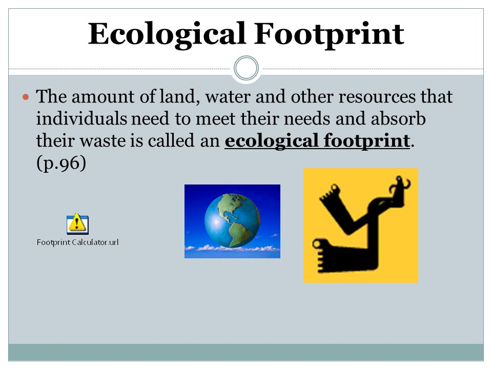Ecological Footprint The amount of land, water and other resources that individuals need to meet their needs and absorb their waste is called an ecological footprint.
