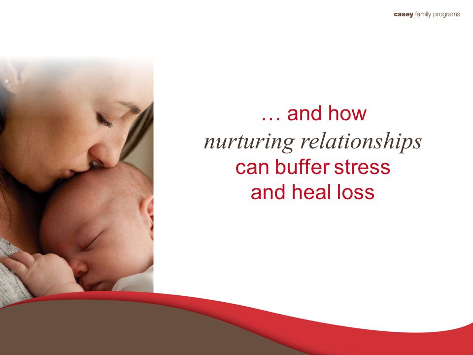 … and how nurturing relationships can buffer stress and heal loss