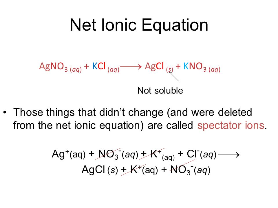 Net Ionic Equation Those things that didn't change (and were deleted from the net ionic equation) are called spectator ions.