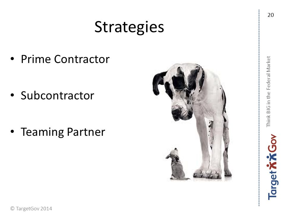 © TargetGov 2014 Strategies Prime Contractor Subcontractor Teaming Partner Think BIG in the Federal Market 20
