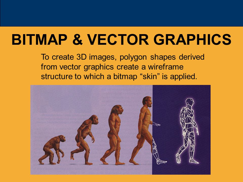 BITMAP & VECTOR GRAPHICS To create 3D images, polygon shapes derived from vector graphics create a wireframe structure to which a bitmap skin is applied.