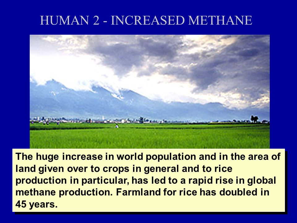 HUMAN 2 - INCREASED METHANE The huge increase in world population and in the area of land given over to crops in general and to rice production in particular, has led to a rapid rise in global methane production.