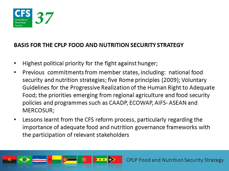BASIS FOR THE CPLP FOOD AND NUTRITION SECURITY STRATEGY Highest political priority for the fight against hunger; Previous commitments from member states, including: national food security and nutrition strategies; five Rome principles (2009); Voluntary Guidelines for the Progressive Realization of the Human Right to Adequate Food; the priorities emerging from regional agriculture and food security policies and programmes such as CAADP, ECOWAP, AIFS- ASEAN and MERCOSUR; Lessons learnt from the CFS reform process, particularly regarding the importance of adequate food and nutrition governance frameworks with the participation of relevant stakeholders CPLP Food and Nutrition Security Strategy