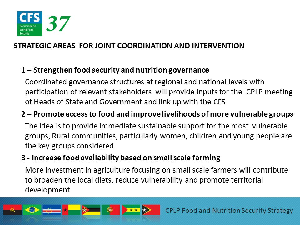 STRATEGIC AREAS FOR JOINT COORDINATION AND INTERVENTION 1 – Strengthen food security and nutrition governance Coordinated governance structures at regional and national levels with participation of relevant stakeholders will provide inputs for the CPLP meeting of Heads of State and Government and link up with the CFS 2 – Promote access to food and improve livelihoods of more vulnerable groups The idea is to provide immediate sustainable support for the most vulnerable groups, Rural communities, particularly women, children and young people are the key groups considered.