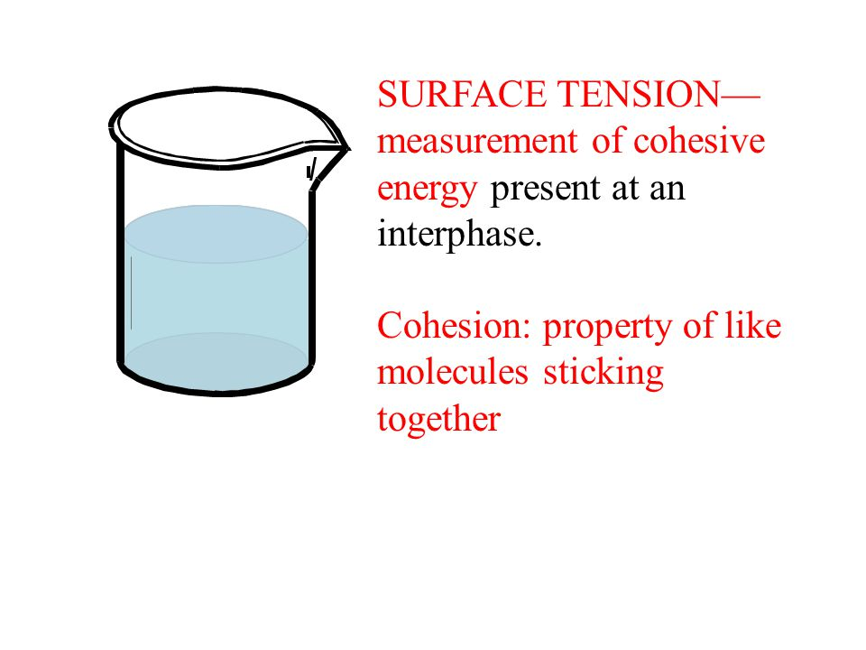SURFACE TENSION— measurement of cohesive energy present at an interphase.