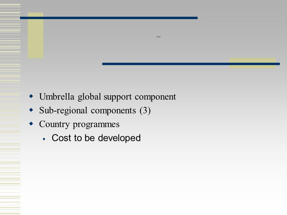 PARIS SEMINAR :  Umbrella global support component  Sub-regional components (3)  Country programmes  Cost to be developed