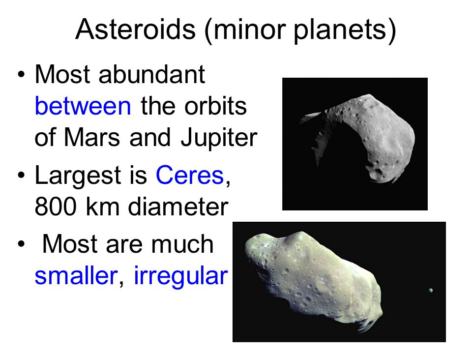 Asteroids (minor planets) Most abundant between the orbits of Mars and Jupiter Largest is Ceres, 800 km diameter Most are much smaller, irregular