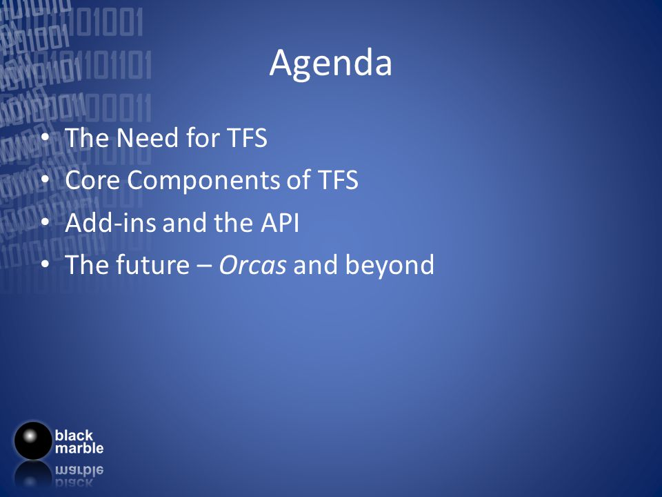 Team Foundation Server the answer to all project management
