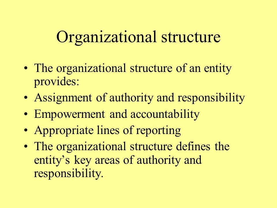 Organizational structure The organizational structure of an entity provides: Assignment of authority and responsibility Empowerment and accountability Appropriate lines of reporting The organizational structure defines the entity's key areas of authority and responsibility.