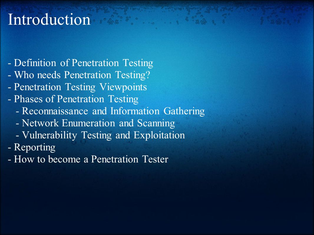 Introduction - Definition of Penetration Testing - Who needs Penetration Testing.