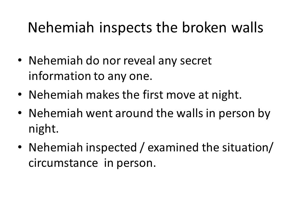 Nehemiah inspects the broken walls Nehemiah do nor reveal any secret information to any one.
