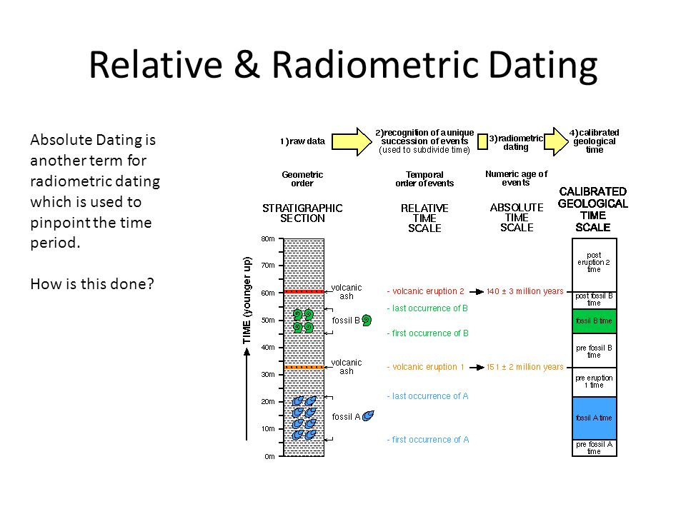 Radio potassium dating is a type of relative dating fossils