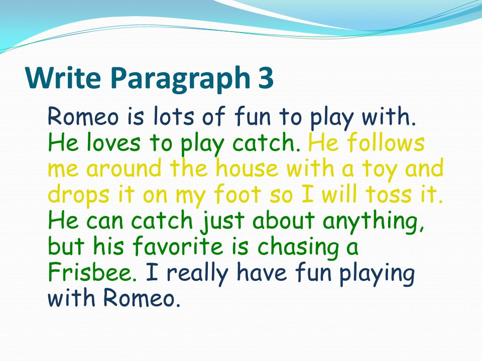 Write Paragraph 3 Romeo is lots of fun to play with.