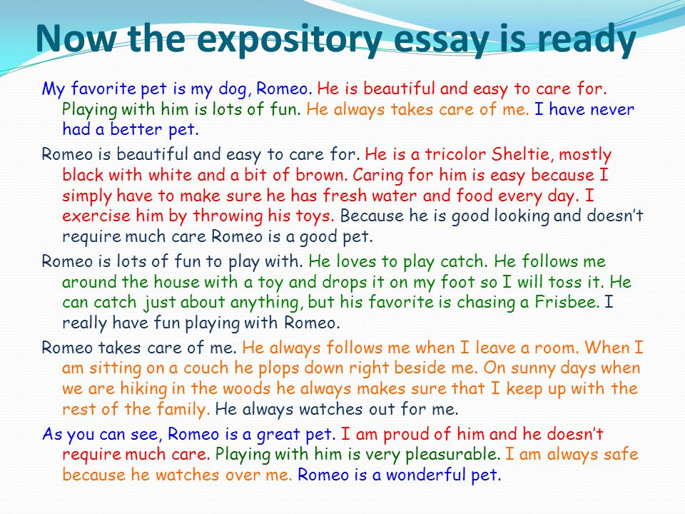 Now the expository essay is ready My favorite pet is my dog, Romeo.